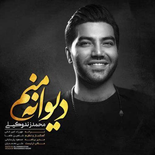 دانلود آهنگ شاد محمد زند وکیلی به نام دیوانه منم
