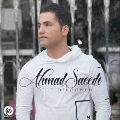 دانلود آهنگ غمگین احمد سعیدی به نام دل دیوونه