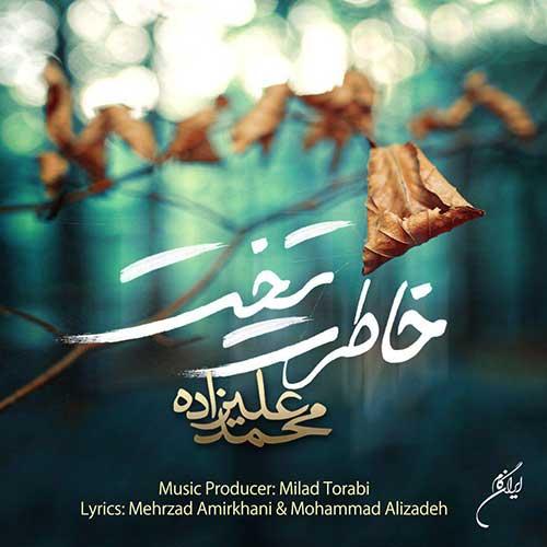 دانلود آهنگ غمگین محمد علیزاده به نام وای از این دل گرفتم در احساساتمو گل