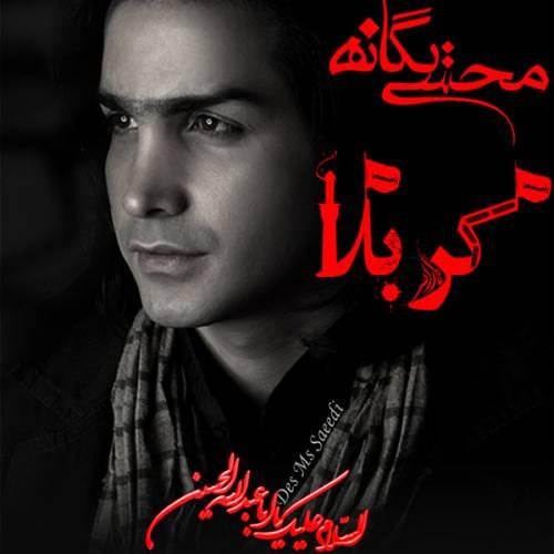 دانلود آهنگ جدید محسن یگانه کربلا